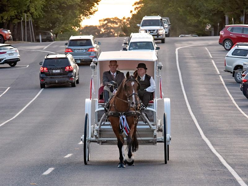 Hire a Beautiful Horse Classic Carriage