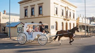 Horse Carriage Tours